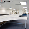 Polybett HPL 1220*2440*13mm thickness White Gloss HPL chemical resistant Compact Sheet